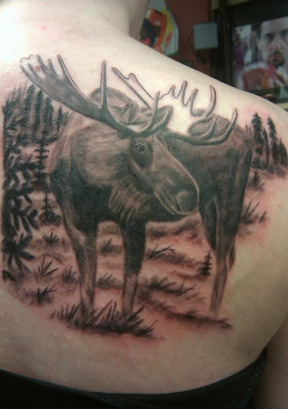 moose by jeff raiano tattoonow. Black Bedroom Furniture Sets. Home Design Ideas