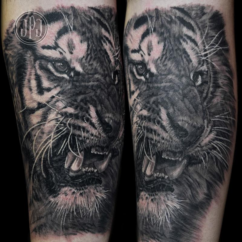 tiger by jose perez jr tattoonow. Black Bedroom Furniture Sets. Home Design Ideas