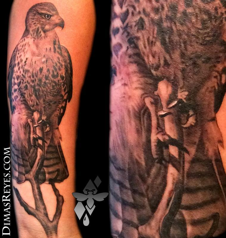Realistic Hawk Tattoo