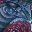 Crow and rose tattoo Tattoo Design Thumbnail
