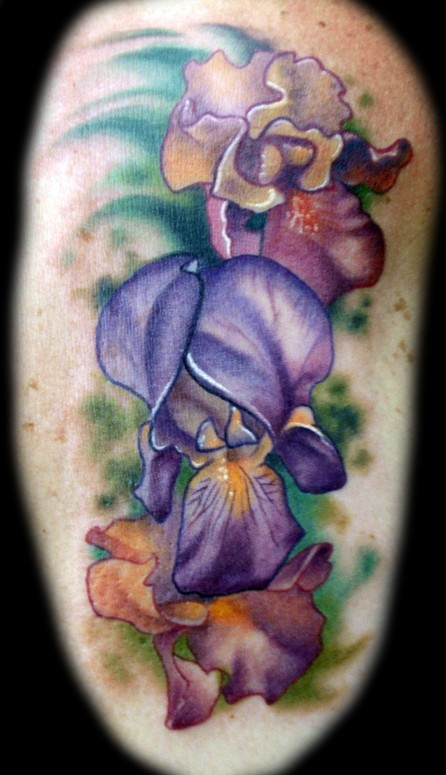 iris flower tattoo by kelly doty tattoos. Black Bedroom Furniture Sets. Home Design Ideas